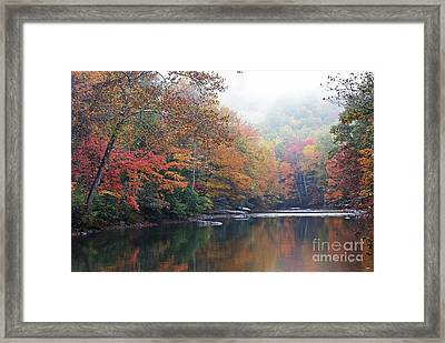 Fall Color Williams River Framed Print by Thomas R Fletcher