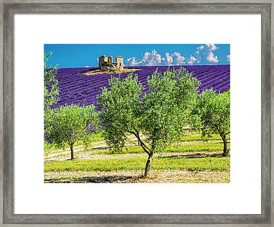 France, Provence, Old Farm House Framed Print by Terry Eggers