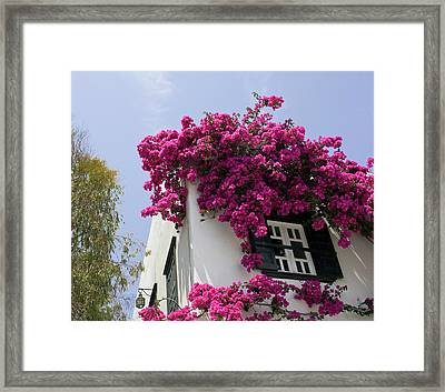 Greece, Mykonos, Hora Framed Print by Jaynes Gallery
