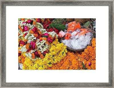 India, Uttar Pradesh, Varanasi Framed Print by Emily Wilson