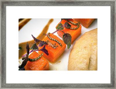 Insects For Human Consumption Framed Print