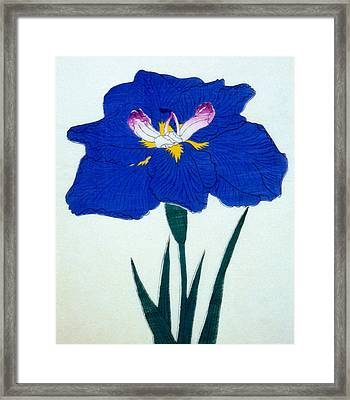 Japanese Flower  Framed Print by Japanese School