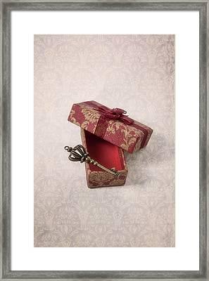 key Framed Print by Joana Kruse