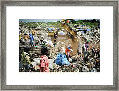 Landfill Scavenging Framed Print