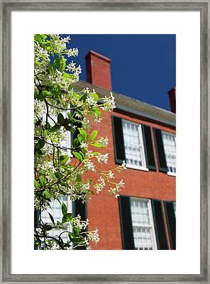 Mississippi, Natchez Framed Print