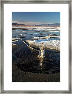 Owens Lake Re-irrigation Framed Print by Jim West