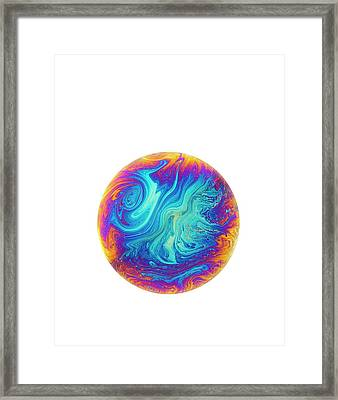 Soap Bubble Framed Print by David Parker