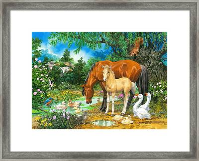 Foal And Mare By The Stream Framed Print by John Francis