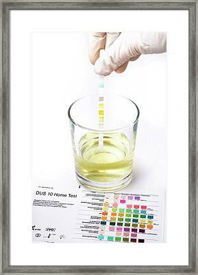 Urine Home Test Kit Framed Print