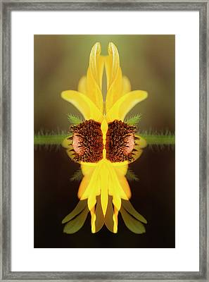 Usa, Colorado, Boulder Framed Print by Jaynes Gallery