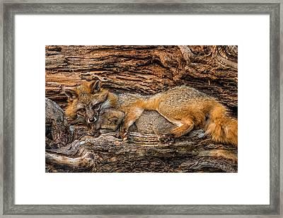 Usa, Minnesota, Sandstone, Minnesota Framed Print by Rona Schwarz