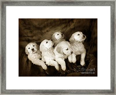 Vintage Festive Puppies Framed Print by Angel  Tarantella