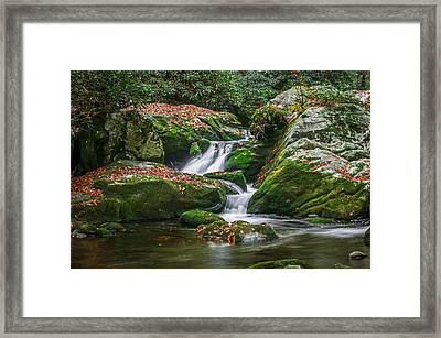 Waterfall Great Smoky Mountains  Framed Print by Rich Franco