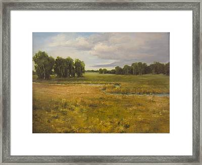 60 Percent Chance Of Rain Framed Print by Mar Evers