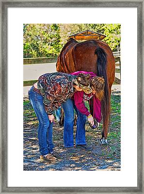 Framed Print featuring the photograph 6004_212 by Lewis Mann