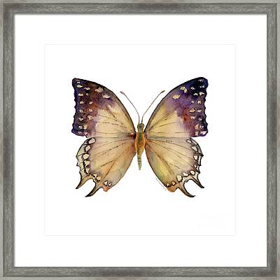 63 Great Nawab Butterfly Framed Print