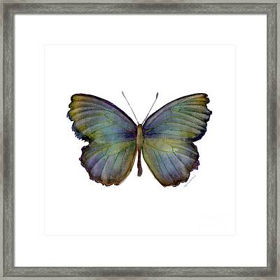 65 Moonglow Butterfly Framed Print by Amy Kirkpatrick