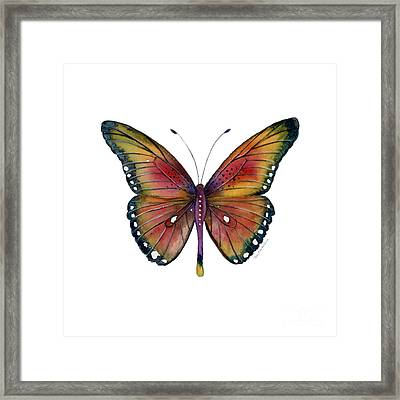 66 Spotted Wing Butterfly Framed Print