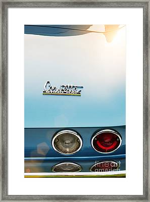66 Sting Ray Framed Print by Tim Gainey