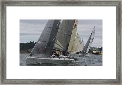 Whidbey Island Race Week Framed Print