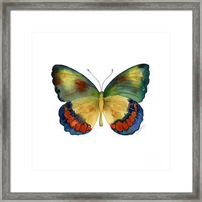 67 Bagoe Butterfly Framed Print