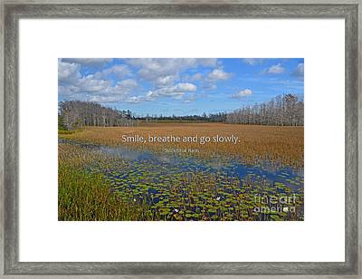 69- Thich Nhat Hanh Framed Print by Joseph Keane