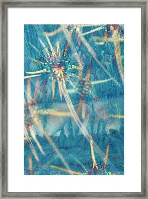 Abstract Polarised Light Micrograph Framed Print