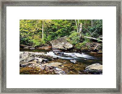 Autumn Along Cranberry River Framed Print