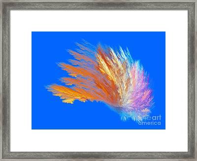 Colour Parade Framed Print by Odon Czintos