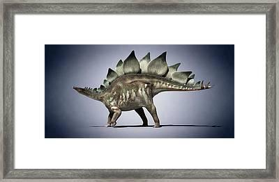 Dinosaur Framed Print by Sciepro