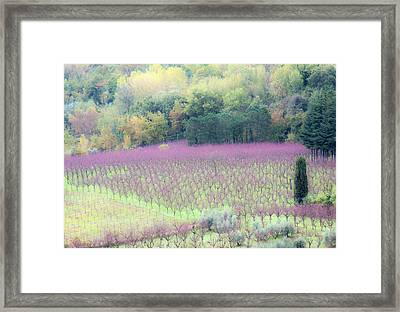 Europe, Italy, Tuscany Framed Print