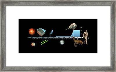 Evolution Of Earth Timeline Framed Print