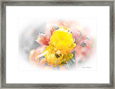 Framed Print featuring the photograph Flower Burst by Gunter Nezhoda