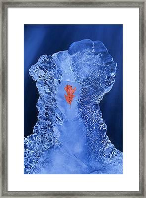 Frozen Beauty Aka Ice Is Nice Iv Framed Print by Bijan Pirnia