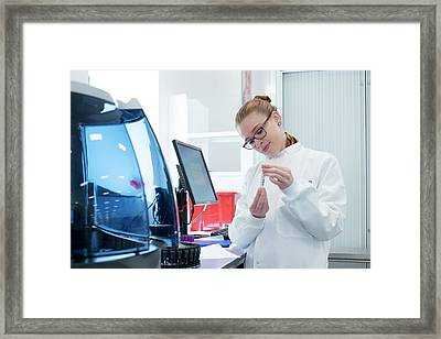 Haematology Laboratory Framed Print
