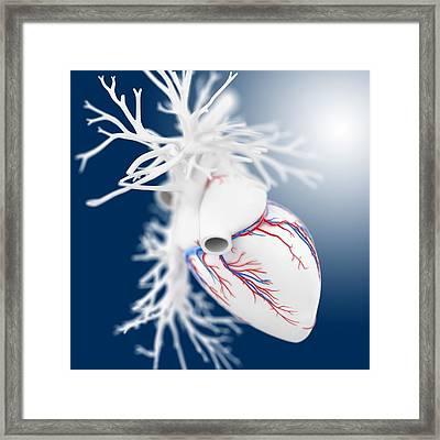 Heart, Artwork Framed Print