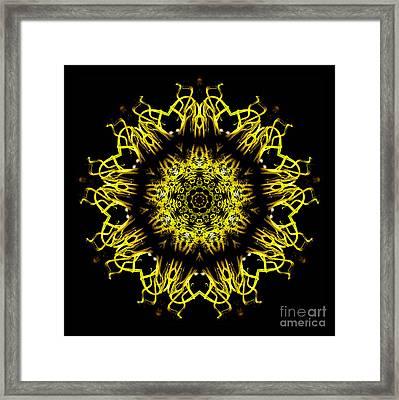 Kaleidoscope Of Blown Glass Framed Print
