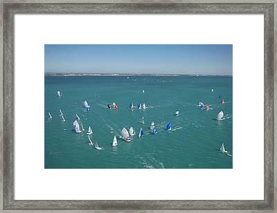 Key West Regatta Framed Print by Steven Lapkin