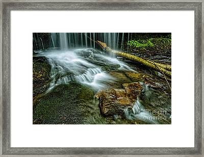 Lin Camp Branch Waterfall Framed Print by Thomas R Fletcher