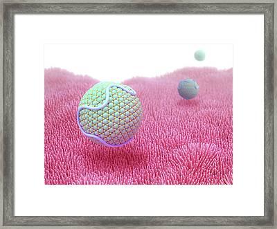 Lipoprotein Framed Print