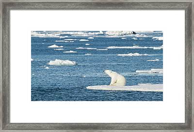 Norway, Svalbard Framed Print