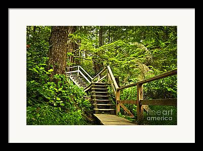 Wooden Stairs Framed Prints