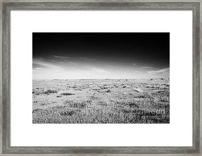 rural prairie grassland open fields bengough Saskatchewan Canada Framed Print