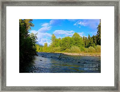 Salmon  Creek  Framed Print by Tim Rice