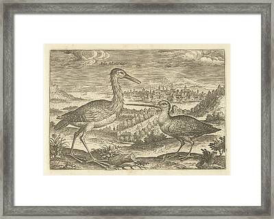 Two Birds In A Landscape, Adriaen Collaert Framed Print by Adriaen Collaert