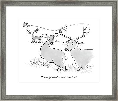 It's Not You - It's Natural Selection Framed Print by Carolita Johnson