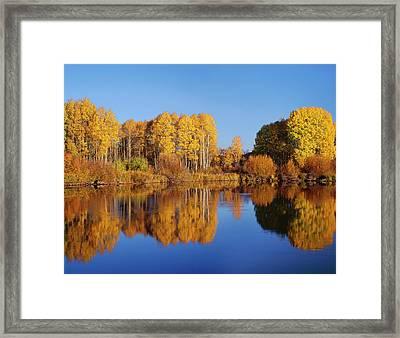 Usa, Oregon, Deschutes National Forest Framed Print