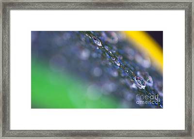 Water Drops Colorful Abstract Background Framed Print by Odon Czintos
