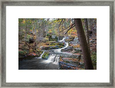 Waterfalls George W Childs National Park Painted   Framed Print by Rich Franco