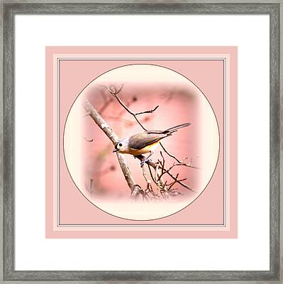 7287-011 Framed Print by Travis Truelove